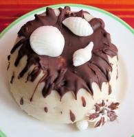budino-cocco-cioccolato
